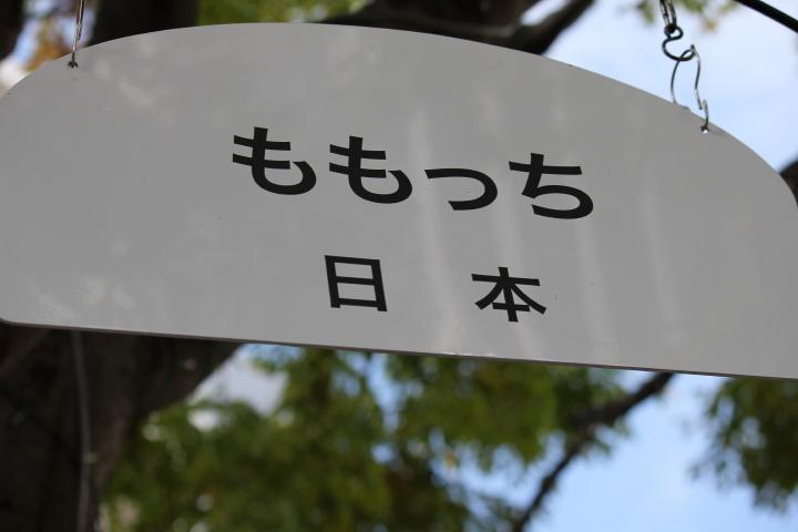 2010_11_07_0420